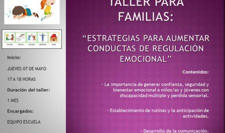 Taller Online para Familias